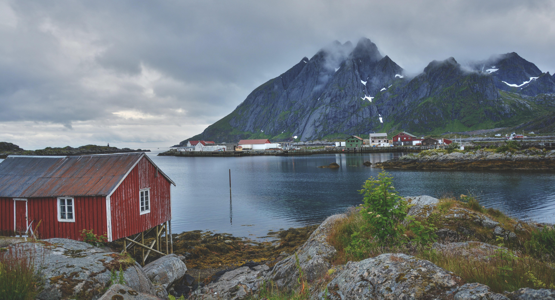 Rolig fjord og fjellscene